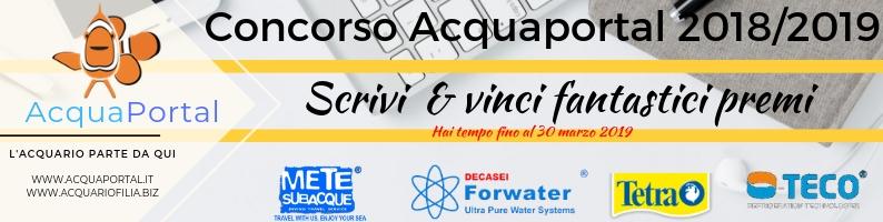 Concorso Acquaportal 2018/2019